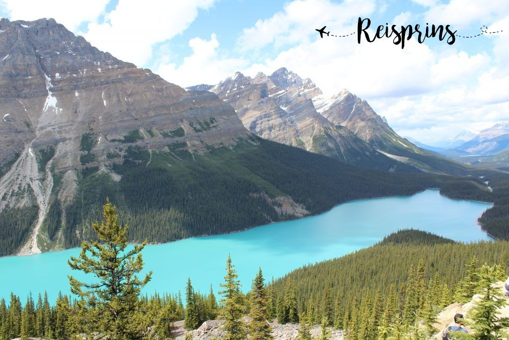 Payto Lake, aan de Icefields Parkway in Canada