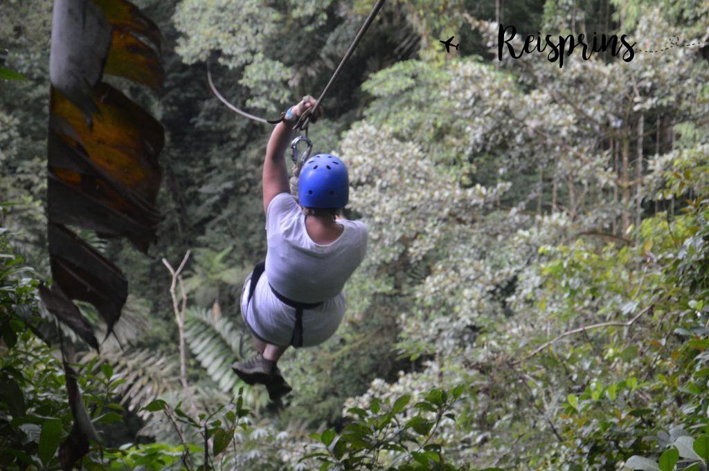 Met hoge snelheid vertrok Judith voor de volgende zipline.