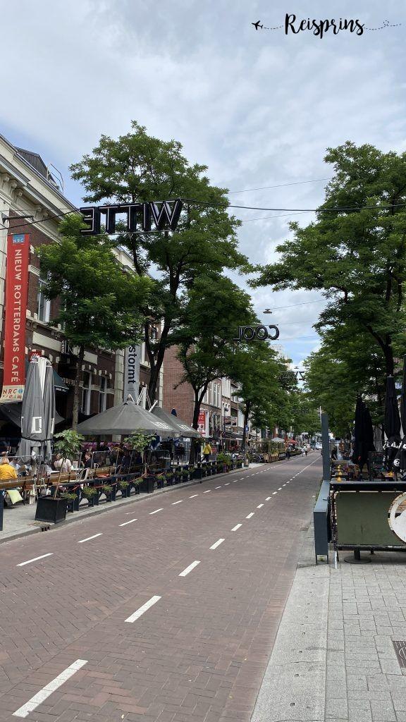 De Witte de Withstraat