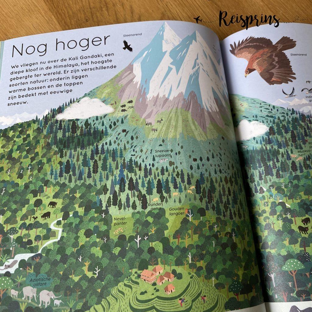 De tekeningen zijn gevuld met de dieren en mensen die er leven.
